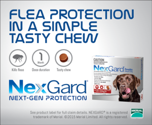 NXGD-Advert_70x85mm_Flea