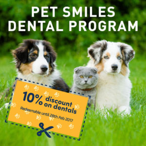 dental_discount
