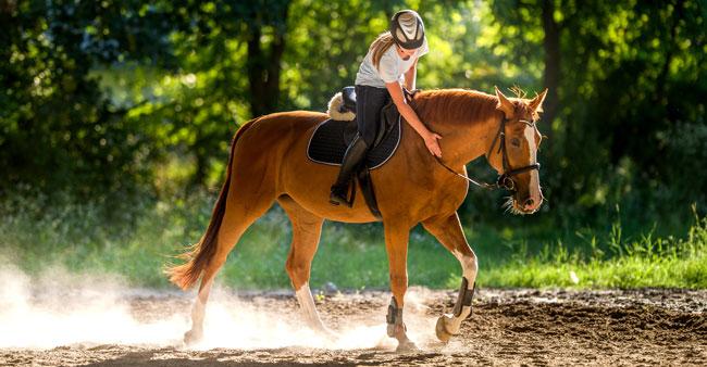 summer_horseandrider