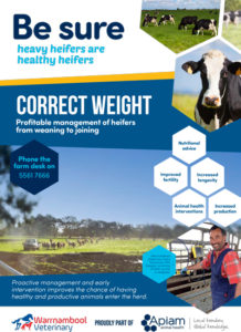 correct_weight_thumbnail_brochure