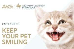 Fact-sheet-Keep-your-pet-smiling