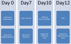 chart_sexed_semen_trial